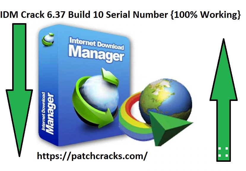 IDM Crack 6.37 Build 10 Serial Number {100% Working}