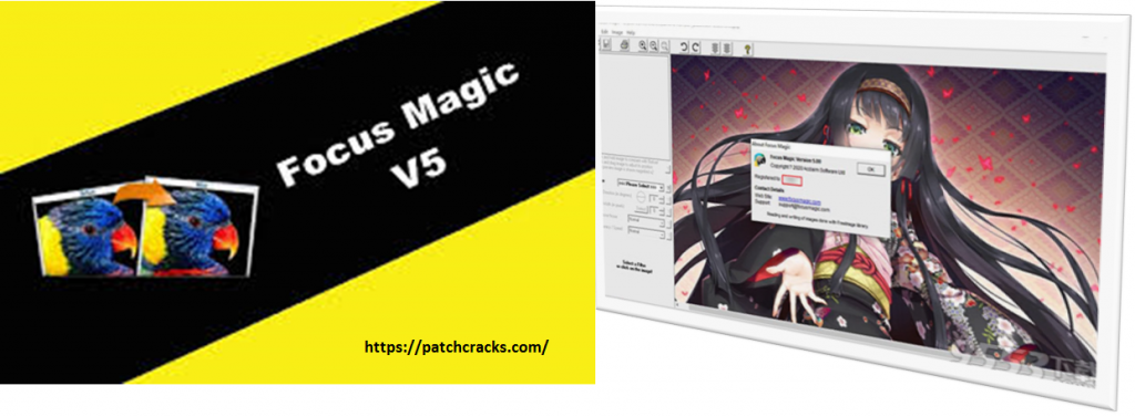Focus Magic 5.00b Portable Crack Registration Code Download