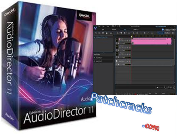 CyberLink AudioDirector 11.0.2304 + Crack Free Download 2021
